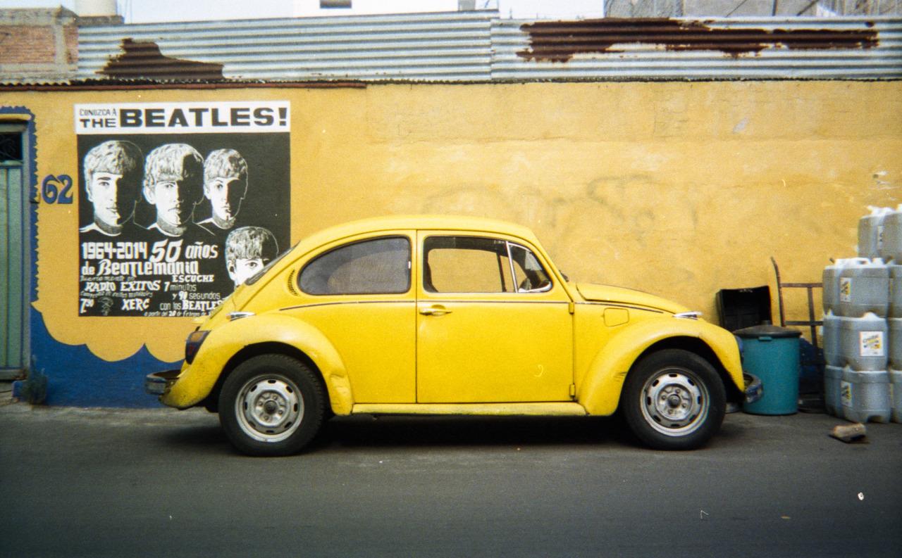 Yellow Beetle [Xochimilco, Mexico, 2014]