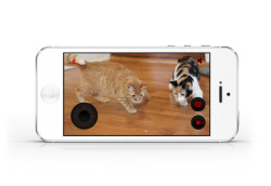 laughingsquid:  Petcube, A Smartphone-Controlled Cube For Playing, Watching, and Interacting With Pets Remotely  I need this