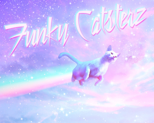 I will be announcing some very exciting news for Funky Catsterz very soon!  Stay tuned!!