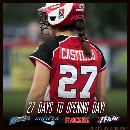 27 days until opening day!  June 5, 2013