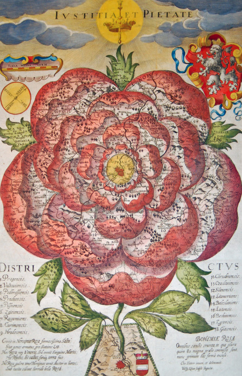 "bible-garden:  Rose-Shaped Map of Bohemia (1677) ""A map that shows Bohemia as a stylised Hapsburg rose. The stem firmly connects the flowering Bohemian rose to the fertile soil of Vienna, the Habsburg's political centre. The Latin text at the bottom explains: ""'There grew a graceful Rose in the Bohemian woods, and an armoured lion standing guard next to her. That Rose had grown out of the blood of Mars, not of Venus. […] Do not fear, lovely Rose! There comes the Austrian. […] The Rose of Bohemia, bloody for all the centuries, where more than 80 battles were waged. She has been now drawn in this form for the first time.'"""