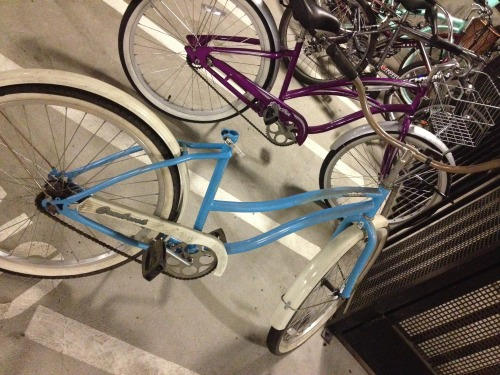 "Biking to campus without a seat hurts.   We have all heard countless stories of people walking out of class only to find that their lock has been cut or their bike scavenged for parts, the thieves leaving only the frame. Then comes the embarrassment of walking back through campus with only half of your bike. Santa Clara students have known bike theft occur on campus, but the theft is a problem for students living off-campus as well. Junior Megan Alferness knows the pain all too well.  After locking up her bike outside, she made a quick stop in to Safeway on her way home from class.  When she returned to the parking lot a man was riding away on her cruiser and Alferness was forced to walk home. Josie Hull, a senior currently residing in Domicilio Apartments has endured two bike thefts.  The first from a bike rack in the University Villas occurred her junior year.  Hull was using a cable lock at the time that was easily cut by the thief.  Her entire bike was gone when she went to unlock it before class.  It was enough to make her cry. This year while living in Domicilio and using a recommended U-Lock, Hull began locking a new bike in the parking structure.  A key censor is needed to get inside the parking garage, yet bike theft continues.  Hull found her bike stripped down to the frame: handlebars, tires and seat all gone.  The thief's tool was still attached to the frame.  Most likely the culprit was sighted by another Domicilio resident and had to make a quick escape and leave their tool behind.  ""I didn't cry the second time,"" reports Hull, ""I just bought new parts, but it was still frustrating.""   Now, her refurbished bike is kept in the safety of her fourth-floor balcony.  Rumor has it that the Domicilio burglar has been spotted on security footage, but has not been caught.    The risk of theft has begun to deter students from cycling to campus; long boards and walking seem to be increasing in popularity.  Meanwhile, more students are also spotted making the painful journey to campus on their seat-less bikes. Campus Safety has published a guide for bike security and safety found here. I wonder if the Santa Clara University Cycling team has the same problems… – Julianne Heckel"