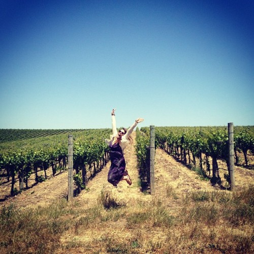 Yay vineyards! #napa #fusegirls