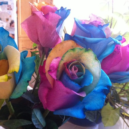 My hubby, what an amazing man!  He surprised me with rainbow roses and a card for our 1st year anniversary!  Soooo beautiful!!