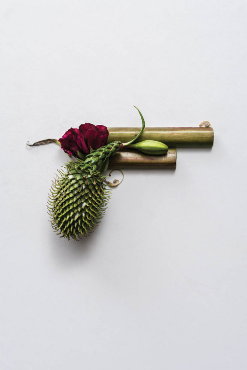 itscolossal:  Harm Less. Organic guns made of plants by Sonia Rentsch.