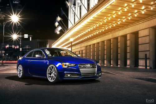 theautobible:  Audi S5 by Evano Gucciardo on Flickr. TheAutoBible.Com