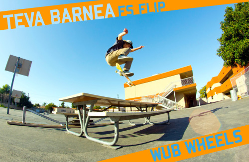 Wub Wheels Teva Barnea Frontside Flip a table.  Photo Dan Kuwai.