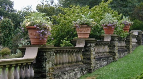 Balustraded wall border in the rose garden. Morris Arboretum, University of Pennsylvania.