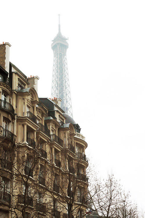 dream-villain:  Paris.