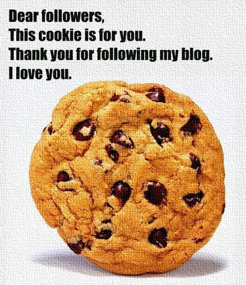 sexloveandnerdystuff:  Thank you to each and every one of my followers :D