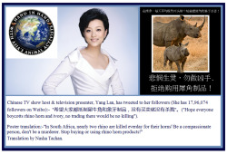 funnywildlife: Yang Lan Tweets 'Boycott Rhino Horn & Ivory' To Her Followers.Yang Lan is a well known journalist & TV presenter in China with a huge following on weibo. She is often called in the Western media, 'China's Oprah' and her TV talk show, 'Yang Lan One-on-One' focuses on getting to know leading figures from the fields of international politics, business, society and culture. On this program, Yang Lan profiles the guests' life stories, career experiences, and personal insights. It is one of the most highly regarded and well known in-depth talk shows in China. The show's guests have included Bill Clinton, Henry Kissinger, Jack Welch, Andrew L. Webber, Tan Dun, Nicole Kidman, Jackie Chan, Kobe Bryant, Hugh Jackman and Michael Phelps.Yang Lan's qq page with her tweet:http://t.qq.com/p/t/16043130651600?filter=6#p=1&time=1304419736&mid=50003034973296&apiType=8&format=1&filter=6 Perhaps we should tell her to highlight the plight of African Lions being Slaughtered Daily for their Bones, the shipped to China to make Wine etc