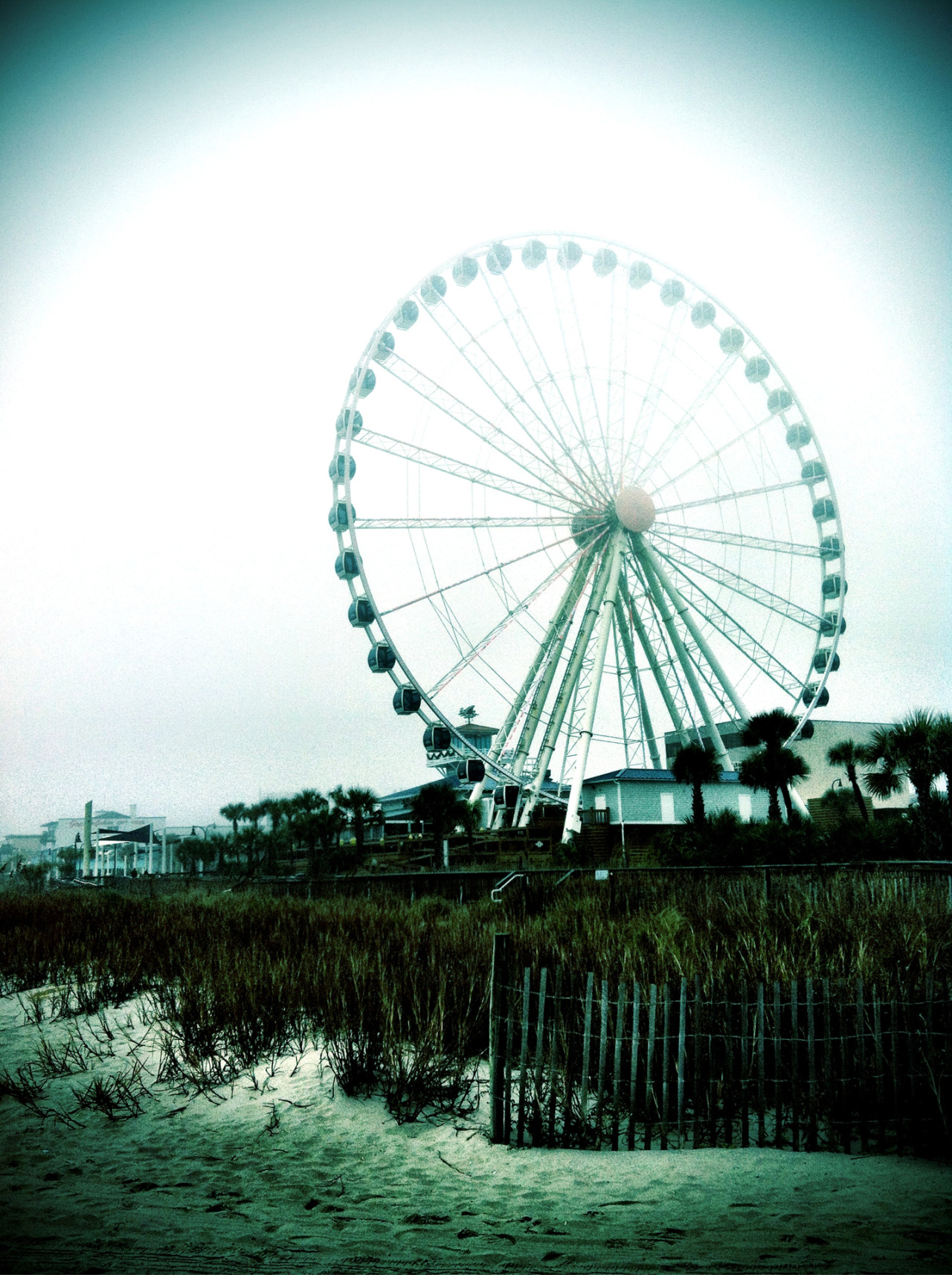 """I see nothing in space as promising as the view from a Ferris wheel."" - E.B. White  Myrtle Beach, South Carolina"