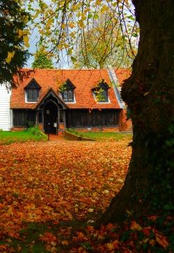 elegant-autumn:  autumn blog all year round that follows back☾☯✿