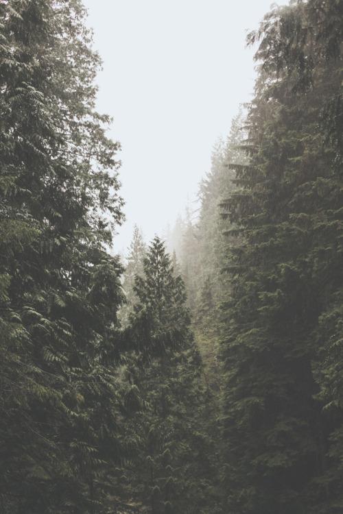 man-and-camera:Pacific Northwest ➾ Luke Gram