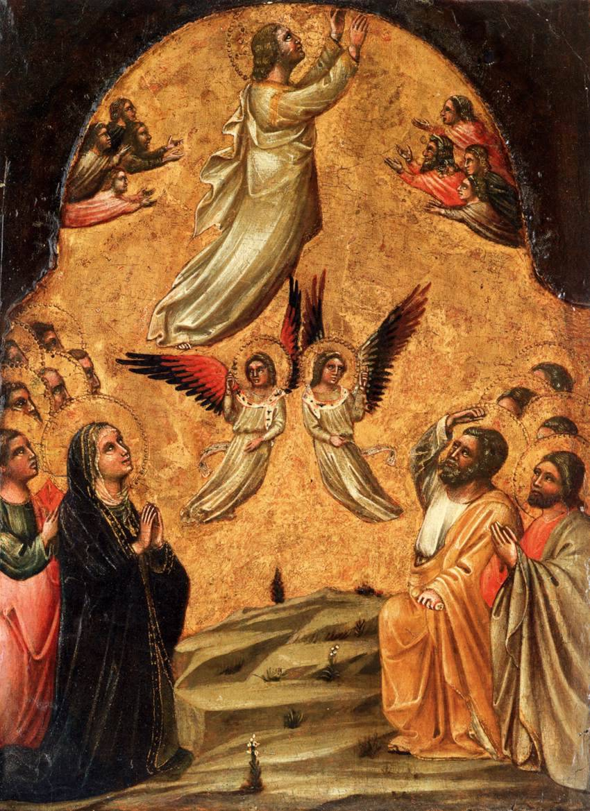 adaltaredei:  Alleluia, alleluia.Go ascended in triumph, and the Lord at the sound of the trumpet.Alleluia.The Lord on Sina, in his holy place, ascending on high, hath led captivity captive.Alleluia.