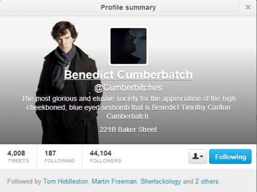 lutik-chan:  remember-thefifthofnovember:  Guys Guys Tom Hiddleston follows a Benedict Cumberbatch fangirl-twitter. I repeat, Tom Hiddleston follows a Benedict Cumberbatch fangirl-twitter. Thus, Tom Hiddleston is a Benedict Cumberbatch fangirl. Tom Hiddleston is a Cumberbitch.  Right And Martin Freeman - too. But he is not on twitter. Damn! It would be great…  wait guys GUYS THIS IS BAD THIS IS  BAD