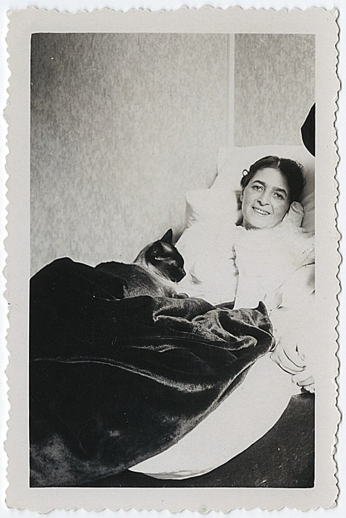 Photograph of an unidentified woman, in bed, with one cat. Undated. Source: Fedor Stepun Papers, General Collection, Beinecke Rare Book and Manuscript Library, Yale University.  With envelope labelled: Amalia.