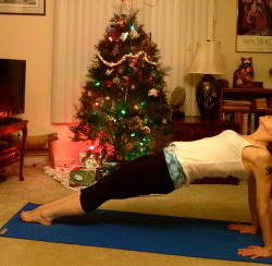 Reverse Holiday Plank