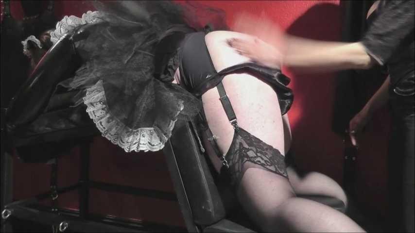 amateur femdom pics,free online english thesaurus,erotic dating