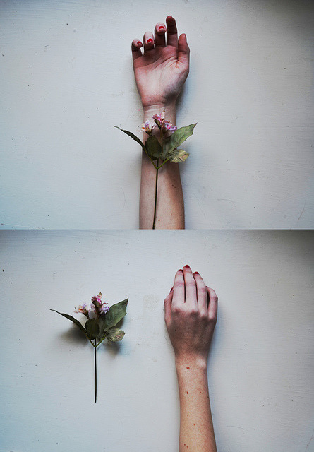 jewist:  fragile things by rebecca∞mahoney on Flickr.