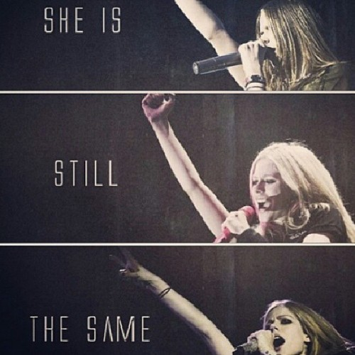 This bitch rocks. #AvrilLavigne