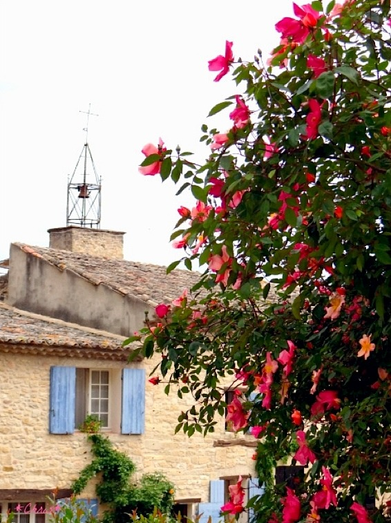 | ♕ |  au printemps en Provence  | by © CHRIS230