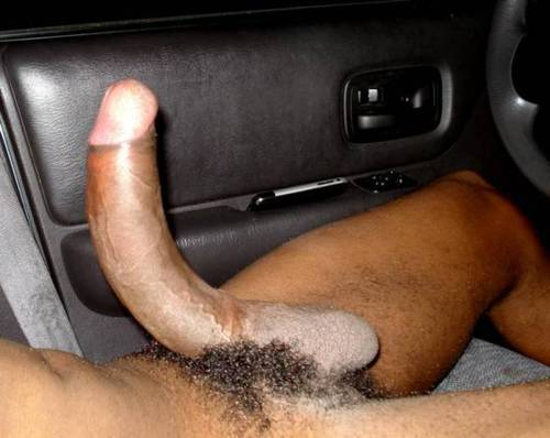 kinkylatexscorpio:  fuckyeahbigblackcocks:  The Bottomline Is The Black Cock Is Supreme…http://fuckyeahbigblackcocks.tumblr.com/  Love that to probe my colon!  It is so beautiful