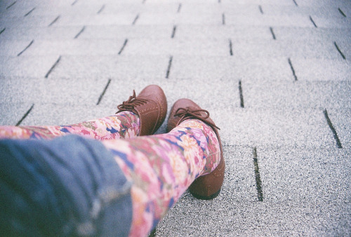 restaurer:  Floral and Oxfords by Kid_Curry on Flickr.