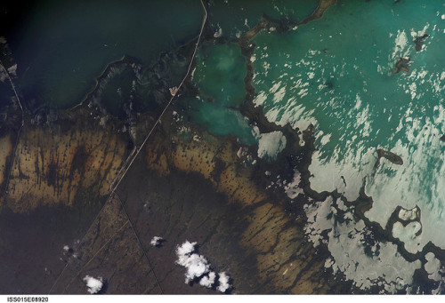 Florida Everglades, via NASA's Marshall Space Flight Center