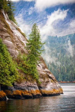 experienced12:   Misty Fjords by Scott Marx