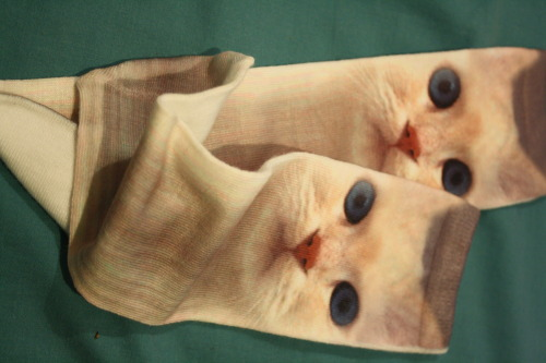 yourmaniac:  I bought the best socks.