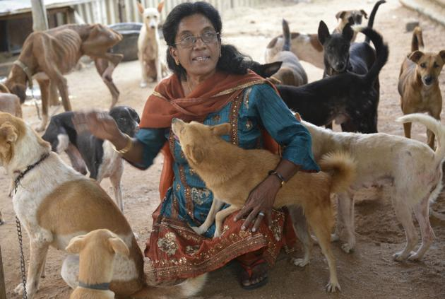 "dogjournal:  WOMAN SINGLE-HANDEDLY OPERATES DOG SHELTER IN INDIA - ""13-year-old Geetha was belted by her father and as always, Blackie jumped between them. The blows rained down but Blackie bore them while Geetha wept. The next day he died from the wounds in her arms. ""That's when I realised, no man can love the way animals can,"" she says."" A woman in India named S.V. Geetha Rani has loved dogs since childhood and began taking care of injured and stray dogs in the area.  Eventually, she rented out an abandoned school and now runs a dog shelter called Snekalaya for Animals with approximately 176 dogs under her care. Here's more from The Hindu:  Snekalaya's school building hosts another 144 healthy dogs. All 176 have names, individual sleeping blankets and food bowls. By day Geetha boils batches of 15-20 kg rice, sweeps the sheds, soaks blankets and washes plates. After 5 p.m., she works at a beauty parlour with her daughter. The day's earnings are split between them and she buys provisions with that money. JM and Sons English Bakery often donates bread and restaurant Yummy Hut gifts meat. An hour-long journey later, she's home by 11 to spread out blankets for her dogs and catch a few winks herself. ""It's not easy but by the grace of God, we've never gone hungry,"" she says. Snekalaya's premises are filling up but Geetha says she still can't reject an abandoned or ill dog. Someday, she hopes for land and sheds of her own so that she can take in more dogs. ""I didn't bring anything when I came to this world and I can't take anything back. So, all I want to do is look after dogs till the day I die.""  Many dogs in India now have access to food and shelter thanks to the lifelong dedication of this one woman. Click here for the full story."