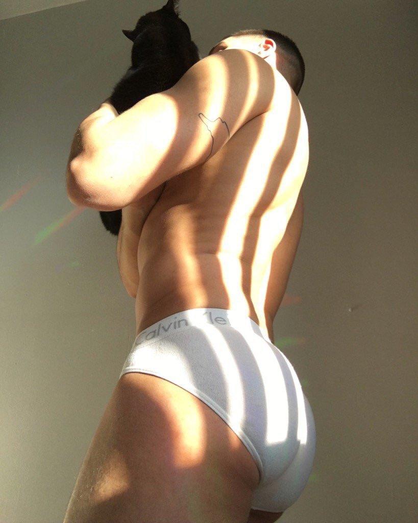Bbw best sites  gay greek lust