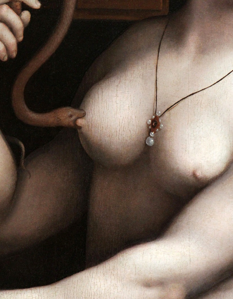 c0ssette:  Giovanni Ricci (Giampietrino) 1525 The Death of Cleopatra (detail)