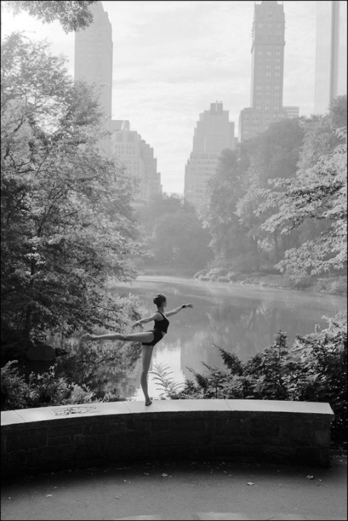 Alys - Central Park Help support the Ballerina Project and subscribe to our new website  Follow the Ballerina Project on Facebook & Instagram For information on purchasing Ballerina Project limited edition prints.