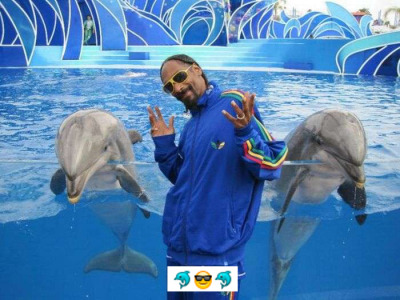 Seapunk snoop!