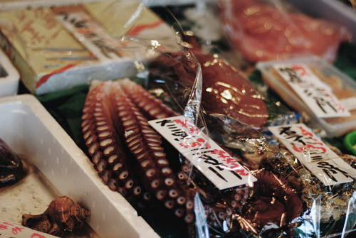 kibouteki:  fish market by oh.my. on Flickr.