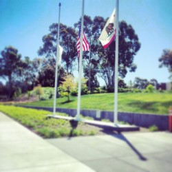 Half raised flags in respect of the tragedies recently at Boston and Waco, TX  (at The Cave)