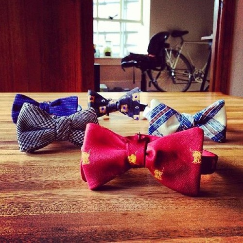 Get ready for more styles! Photo by k. Chan #bowtie #dapper #gatsby #madmen #fashion #silk #gift #bowyerandfletcher #dandy #boarwalkempire