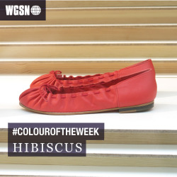 wgsn:   Our #colouroftheweek is hibiscus. A soft pink-hued red currently in-store, starting a cycle of non-classic reds we see evolving for A/W 13/14 and into S/S 14. Great for adding a colour injection to footwear and accessories. Match back to Pantone 18-1762 TCX to confirm WGSN's S/S 13 Global Colour Direction.  Image via & Other Stories
