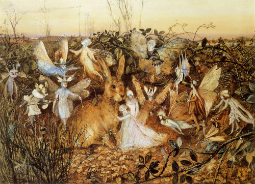 wastelandwild:  Rabbit Among the Fairies illustrated by John Anster Fitzgerald