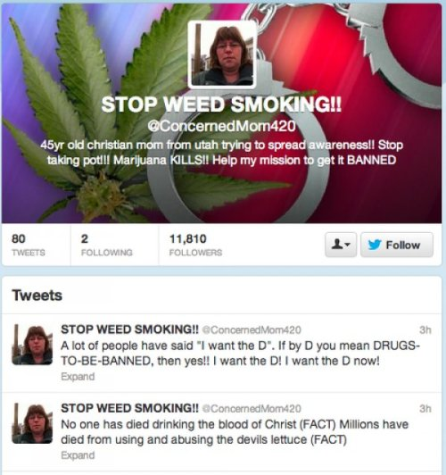 "Anti-Weed Mom Tweets About the Devil's Lettuce Although considering how badly she ""wants the D now""? Probably a sexbot."