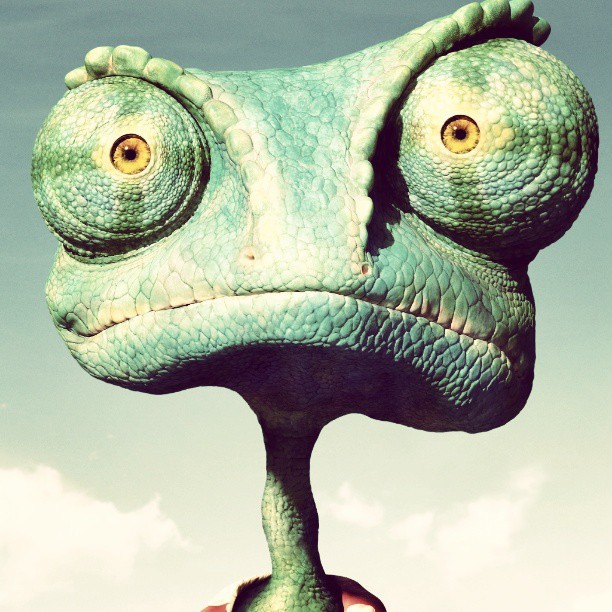 What you looking at? #rango #funny #photography #stayhigh #life #animation #movie #stupid