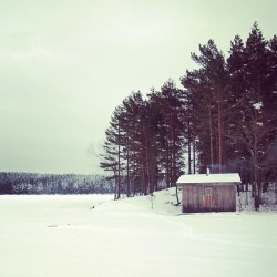Wood fired sauna, followed by rolling around on a frozen lake in the snow. Highly recommended.