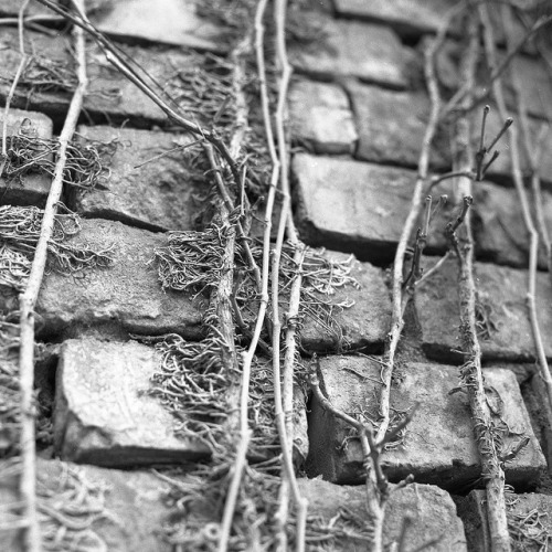 The wall on Flickr.