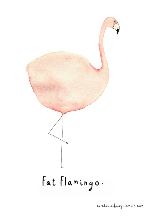 eitoela:  Fat Flamingo on We Heart It -