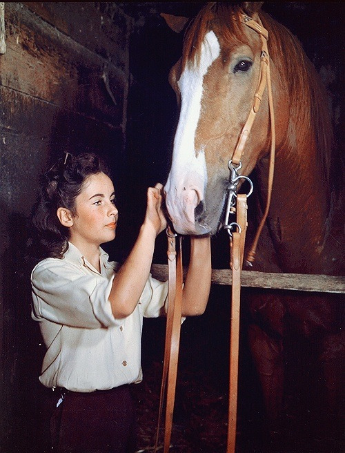 Elizabeth's Taylor & The Pie (a Thoroughbred named King Charles, a grandson of Man O'War)