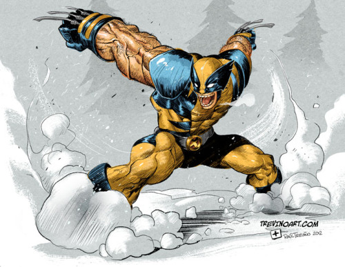 Wolverine  by Raul Trevino on deviantArt.
