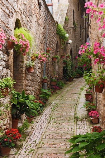 oliviamarlowe:  The lovely French town of Giverny, just outside of Paris. This is also the town where Claude Monet painted his infamous lilly paintings and maintained his garden in the later part of his life.