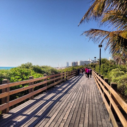 Oh hey South Beach #miami #boardwalk